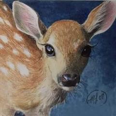 Dreaming_Deer